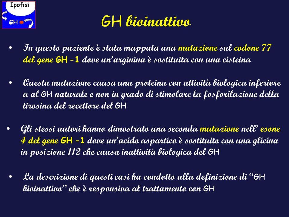 GH bioinattivo In questo paziente è stata mappata una mutazione sul codone 77 del gene GH -1 dove un'arginina è sostituita con una cisteina.