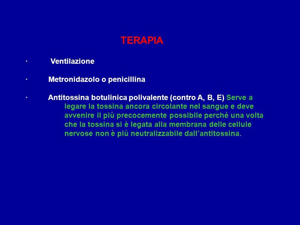 TERAPIA · Ventilazione · Metronidazolo o penicillina