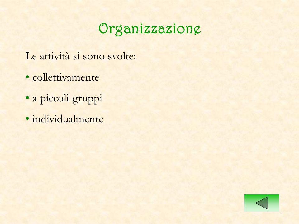 Organizzazione Le attività si sono svolte: collettivamente