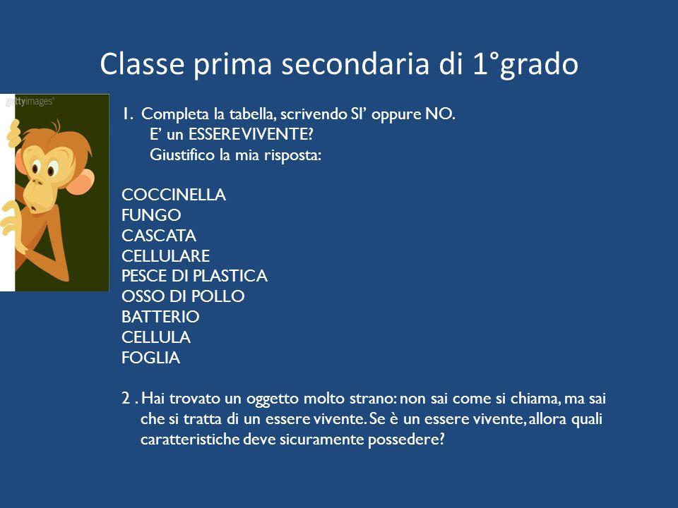 Classe prima secondaria di 1°grado