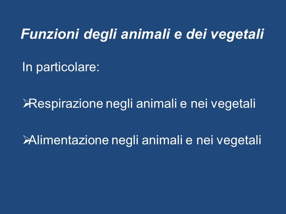 Funzioni degli animali e dei vegetali