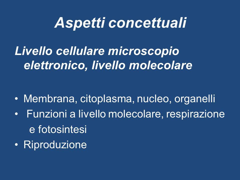 Aspetti concettuali Livello cellulare microscopio elettronico, livello molecolare. Membrana, citoplasma, nucleo, organelli.