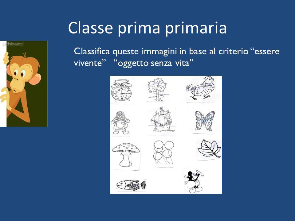 Classe prima primaria Classifica queste immagini in base al criterio essere vivente oggetto senza vita