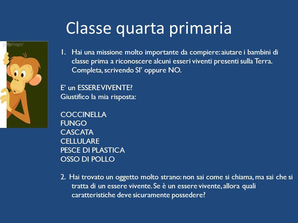 Classe quarta primaria