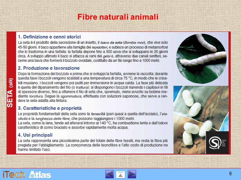 Fibre naturali animali
