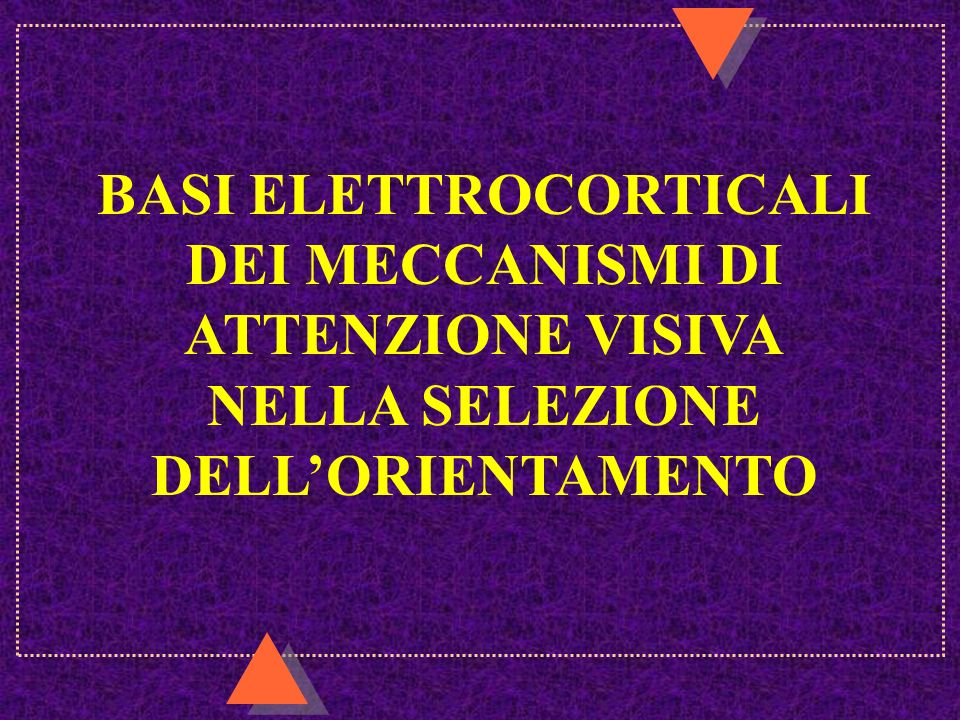 BASI ELETTROCORTICALI DEI MECCANISMI DI ATTENZIONE VISIVA NELLA SELEZIONE DELL'ORIENTAMENTO