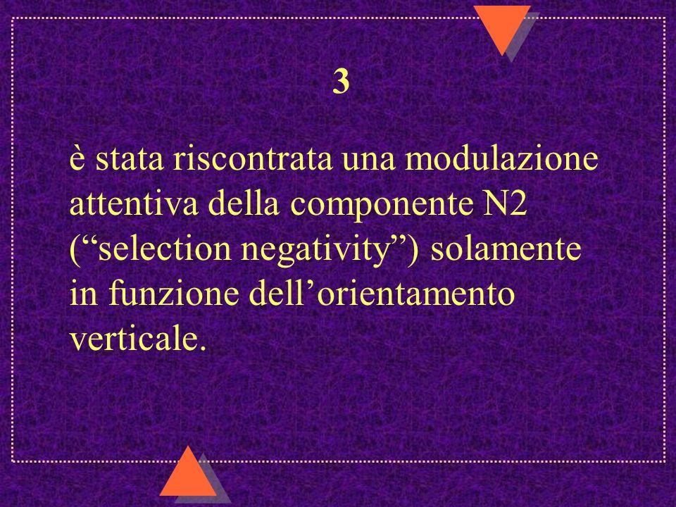 3 è stata riscontrata una modulazione attentiva della componente N2 ( selection negativity ) solamente in funzione dell'orientamento verticale.