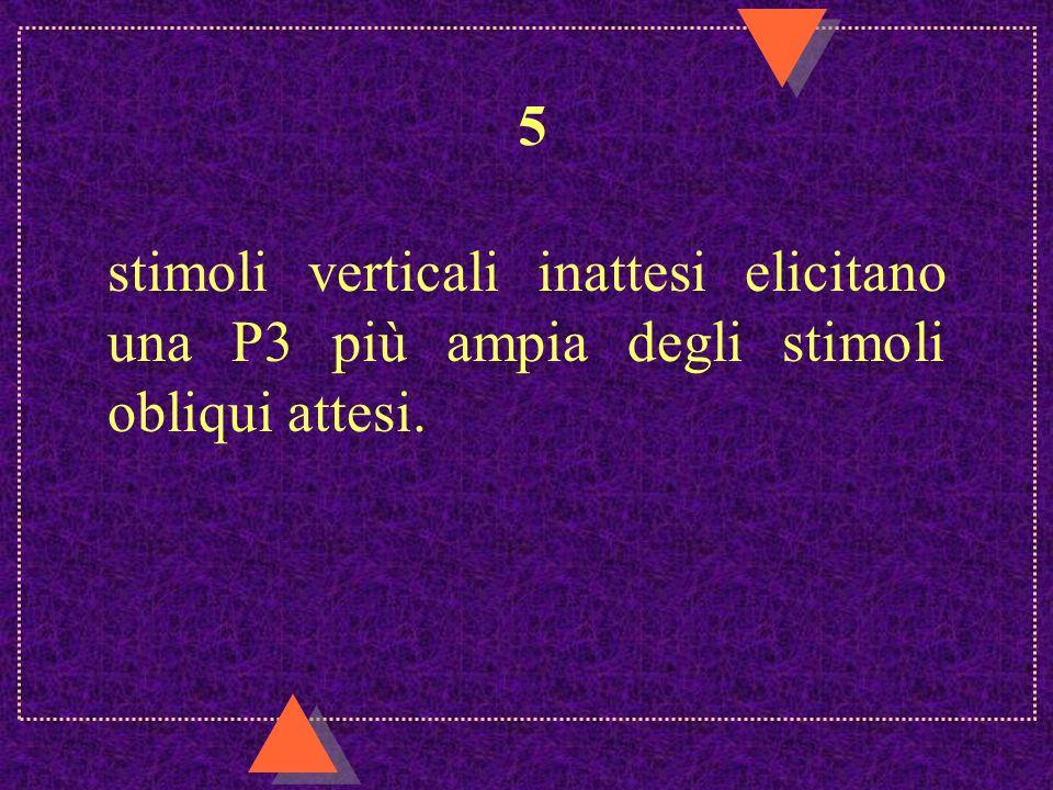 5 stimoli verticali inattesi elicitano una P3 più ampia degli stimoli obliqui attesi.