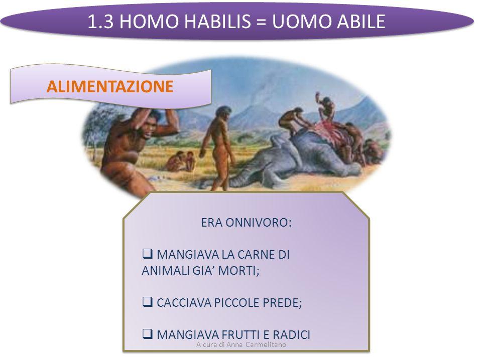 1.3 HOMO HABILIS = UOMO ABILE