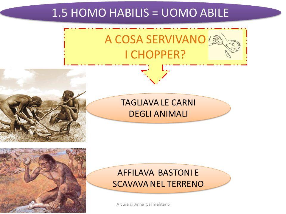 1.5 HOMO HABILIS = UOMO ABILE