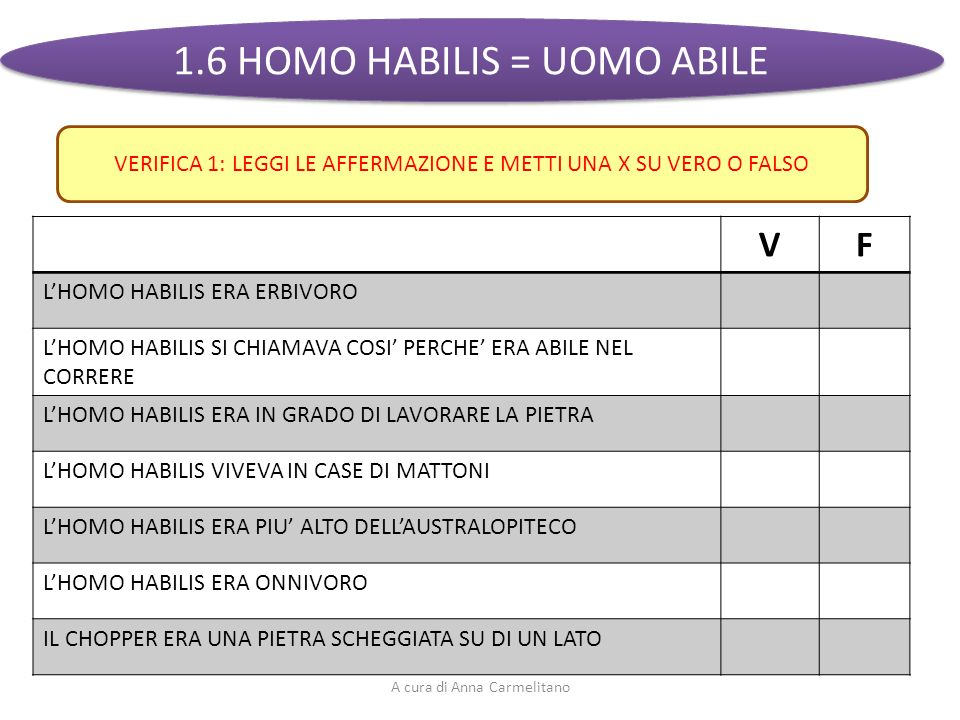 1.6 HOMO HABILIS = UOMO ABILE