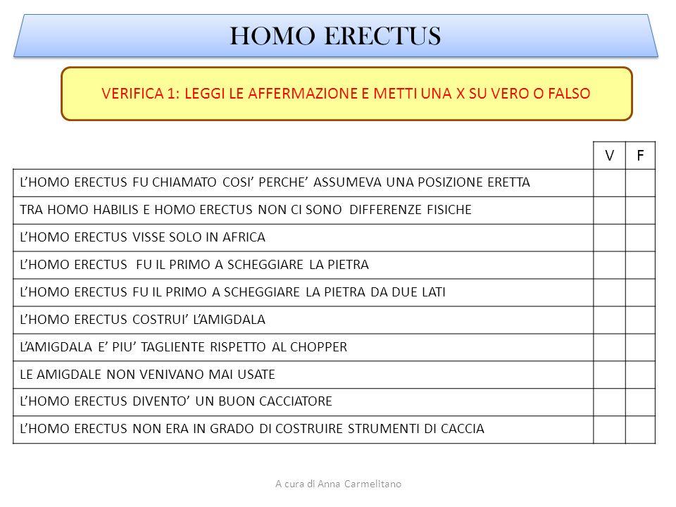 HOMO ERECTUS VERIFICA 1: LEGGI LE AFFERMAZIONE E METTI UNA X SU VERO O FALSO. V. F.
