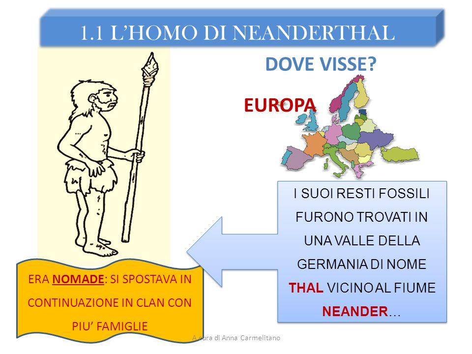 1.1 L'HOMO DI NEANDERTHAL DOVE VISSE EUROPA