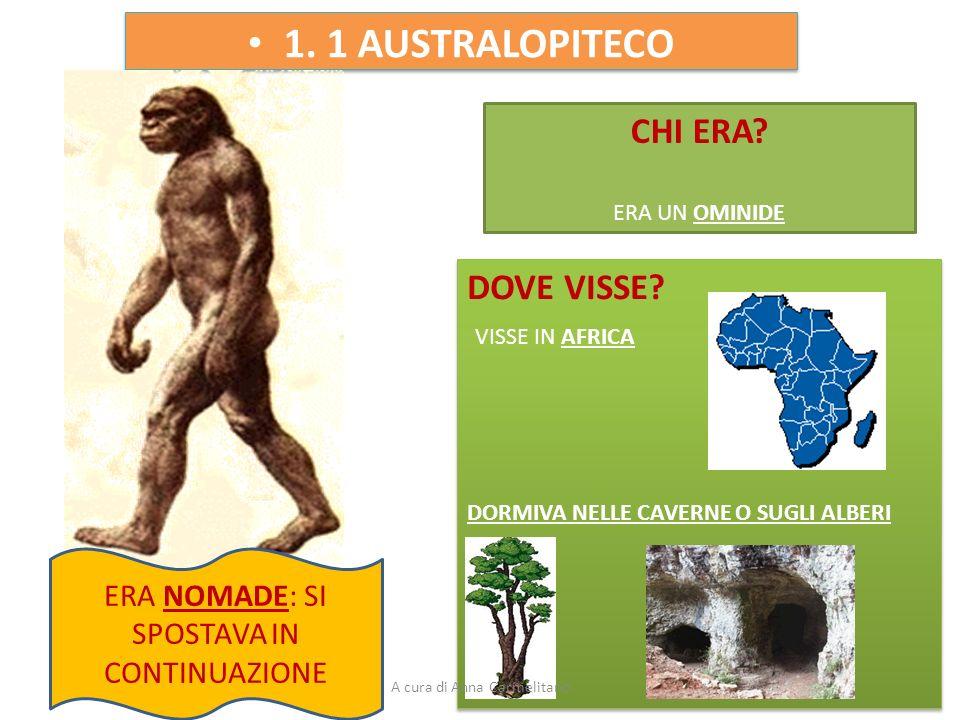 1. 1 AUSTRALOPITECO CHI ERA DOVE VISSE VISSE IN AFRICA