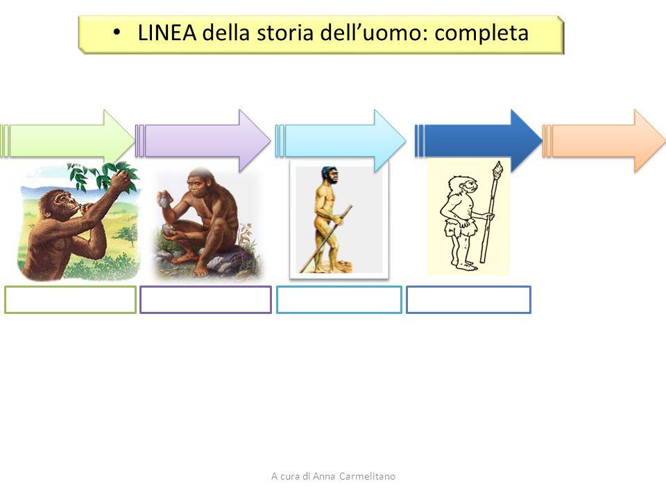 Percorso di storia l evoluzione dell uomo ppt scaricare for Planimetrie della caverna dell uomo
