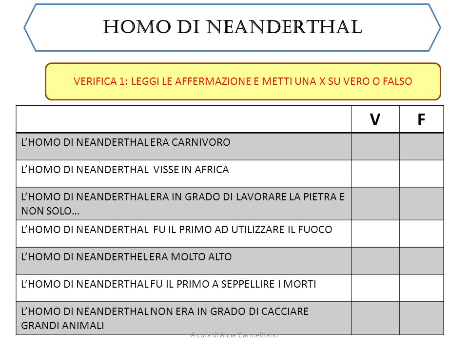 HOMO DI NEANDERTHAL V F L'HOMO DI NEANDERTHAL ERA CARNIVORO