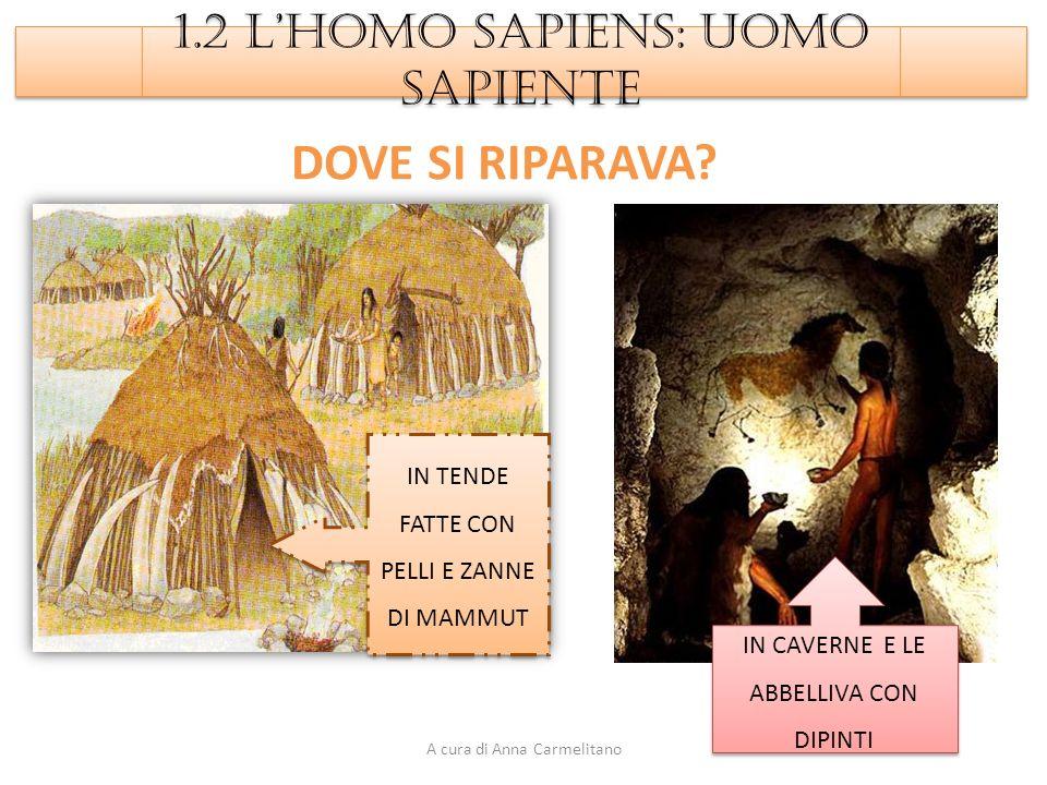 DOVE SI RIPARAVA 1.2 L'HOMO SAPIENS: UOMO SAPIENTE