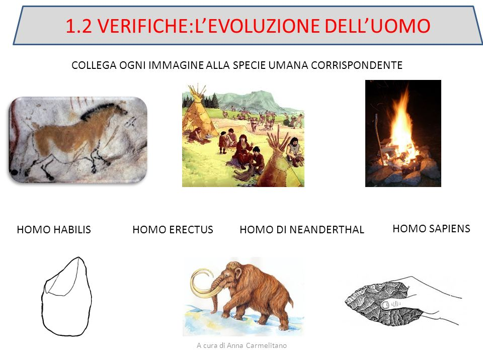 1.2 VERIFICHE:L'EVOLUZIONE DELL'UOMO