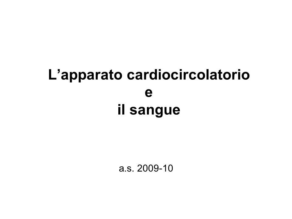 L'apparato cardiocircolatorio e il sangue