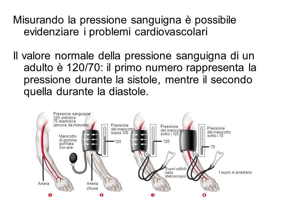 Misurando la pressione sanguigna è possibile evidenziare i problemi cardiovascolari