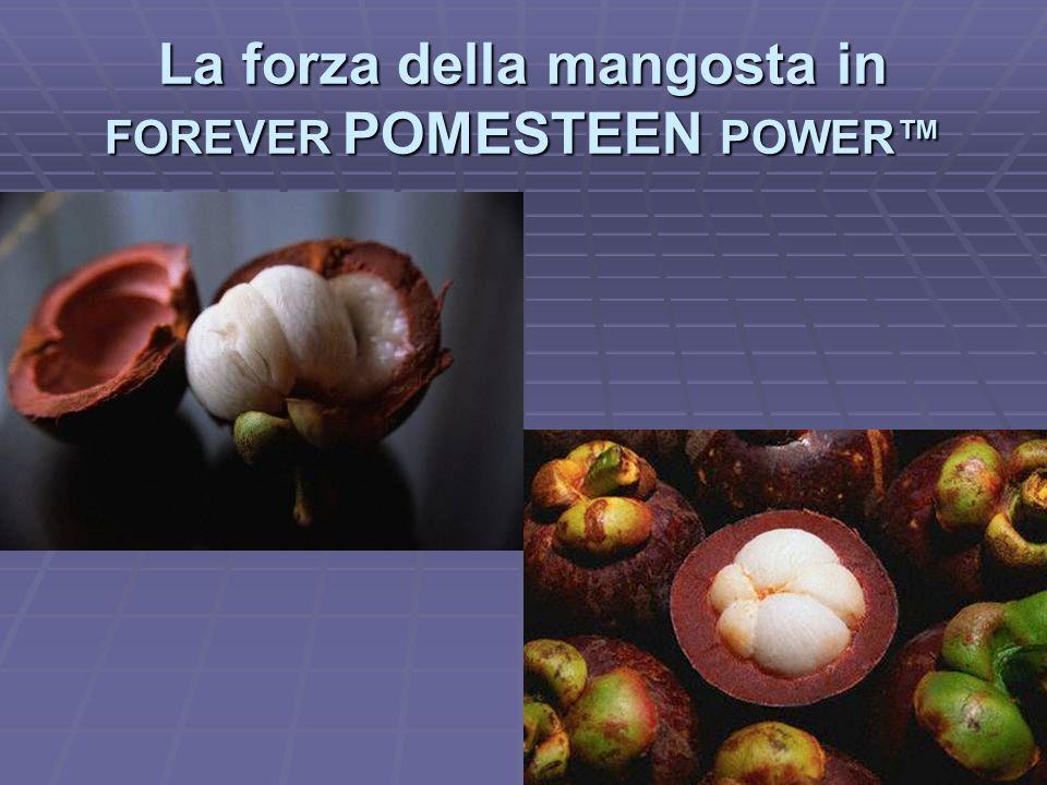 La forza della mangosta in FOREVER POMESTEEN POWER™