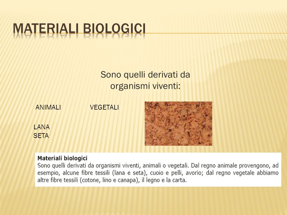 Sono quelli derivati da organismi viventi: