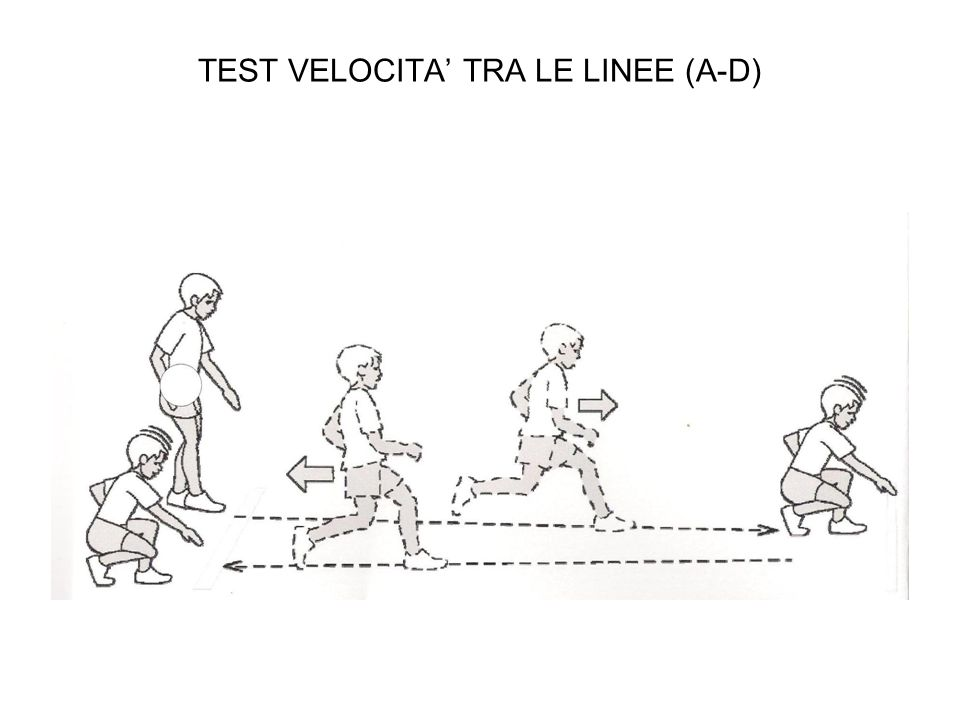 TEST VELOCITA' TRA LE LINEE (A-D)