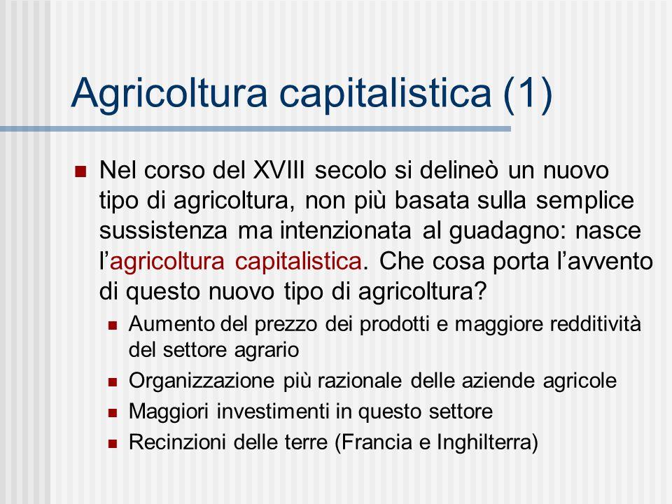 Agricoltura capitalistica (1)