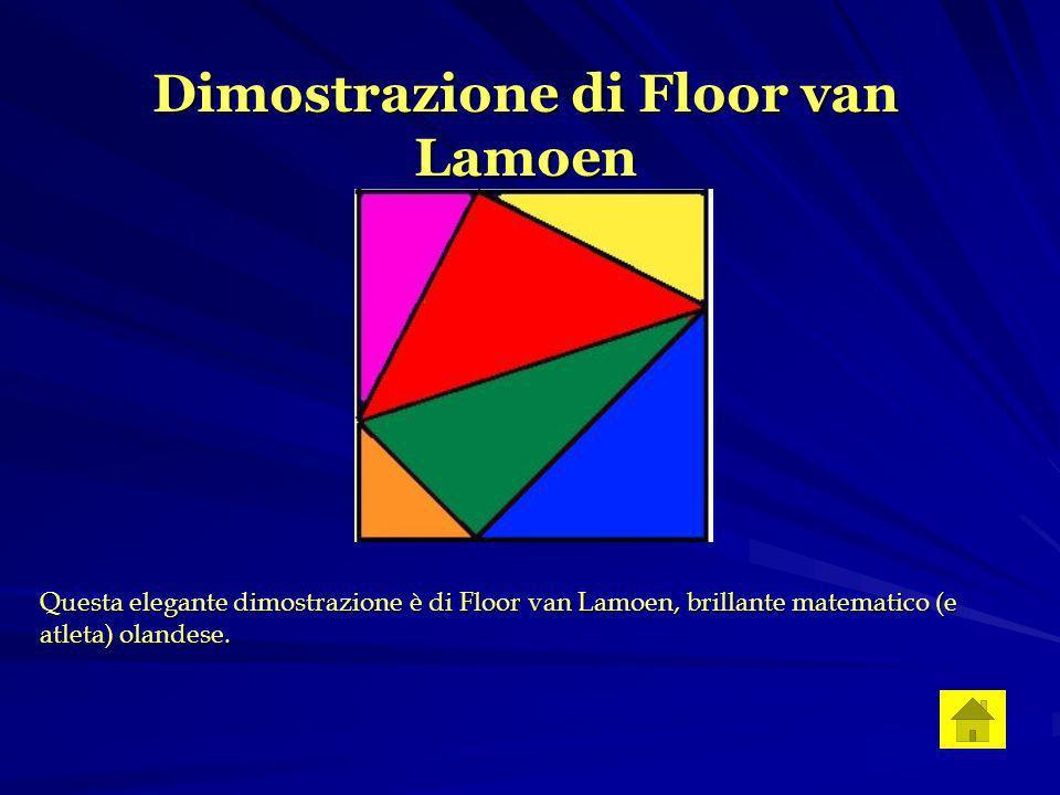 Dimostrazione di Floor van Lamoen