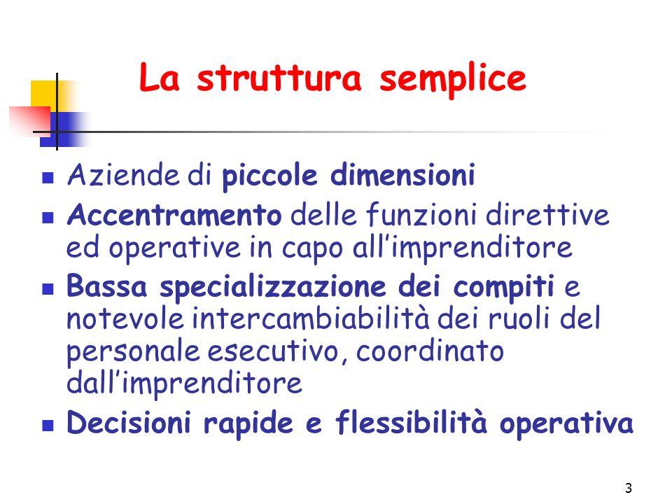 La struttura semplice Aziende di piccole dimensioni