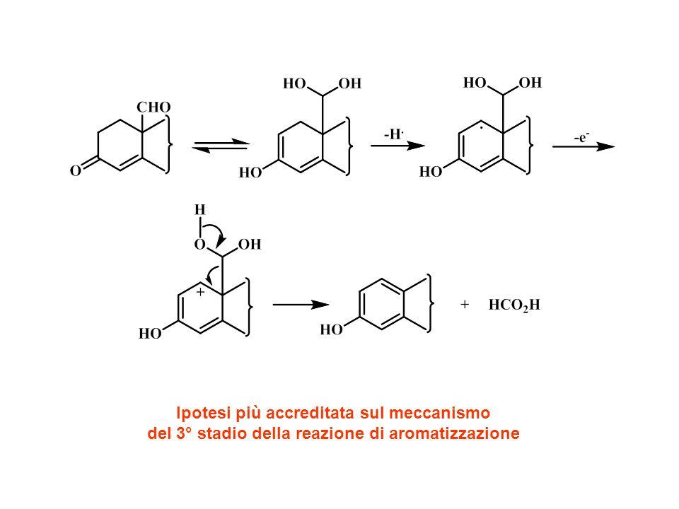 inibitore aromatasi non steroideo