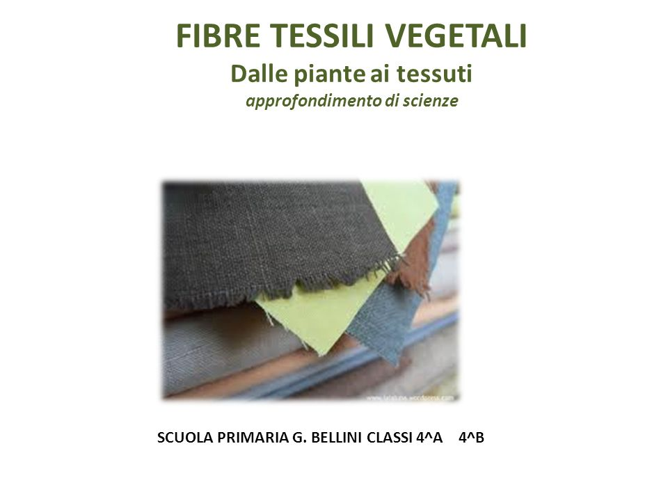 SCUOLA PRIMARIA G. BELLINI CLASSI 4^A 4^B
