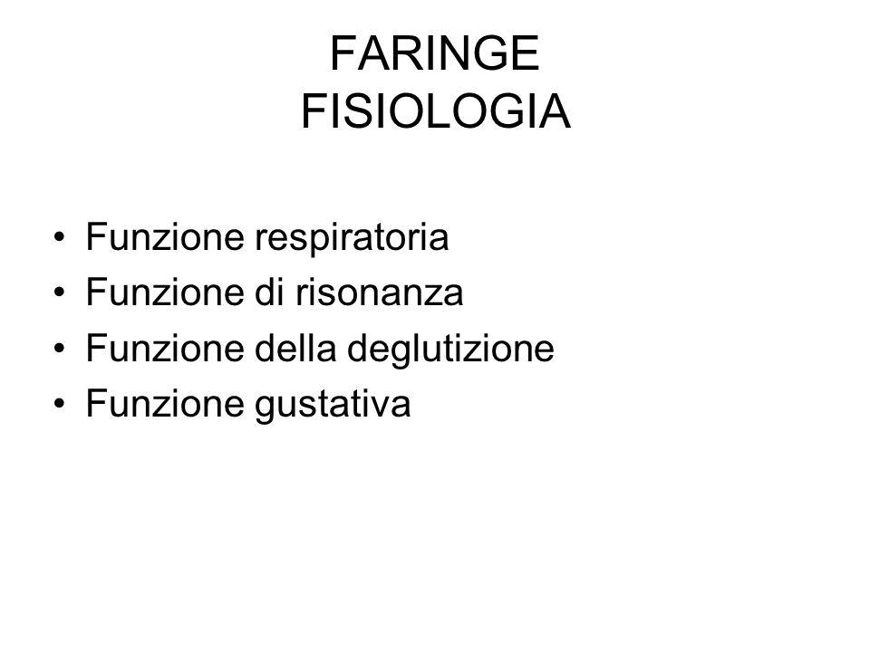 FARINGE FISIOLOGIA Funzione respiratoria Funzione di risonanza