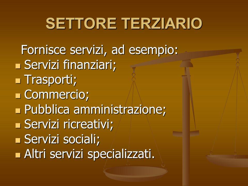 SETTORE TERZIARIO Servizi finanziari; Trasporti; Commercio;