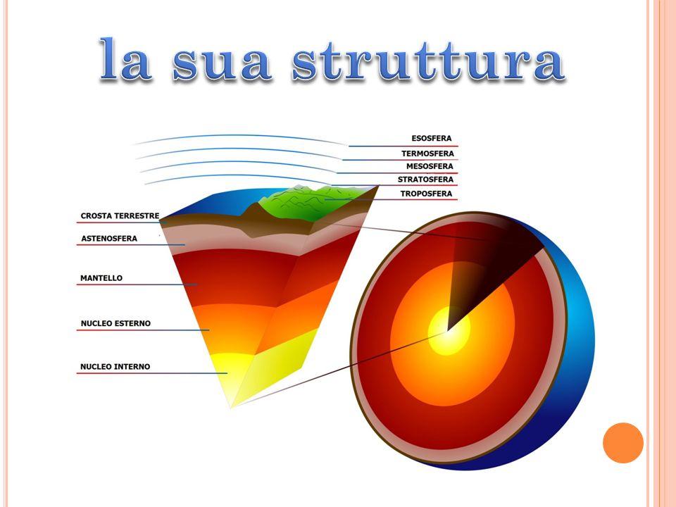 la sua struttura