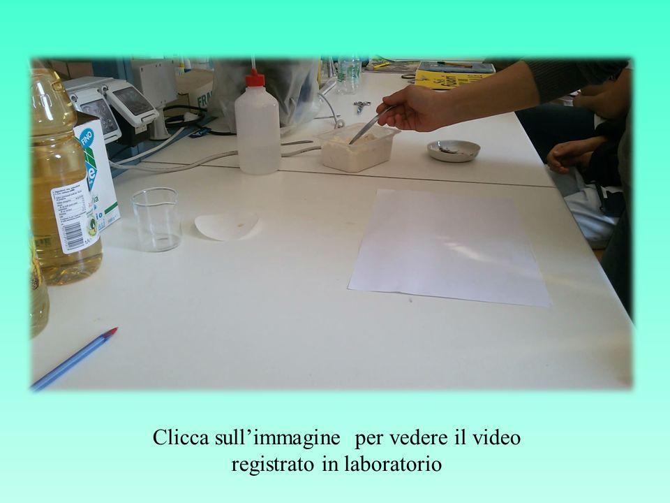 Clicca sull'immagine per vedere il video registrato in laboratorio