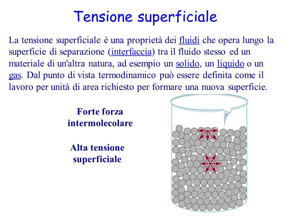 Forte forza intermolecolare Alta tensione superficiale