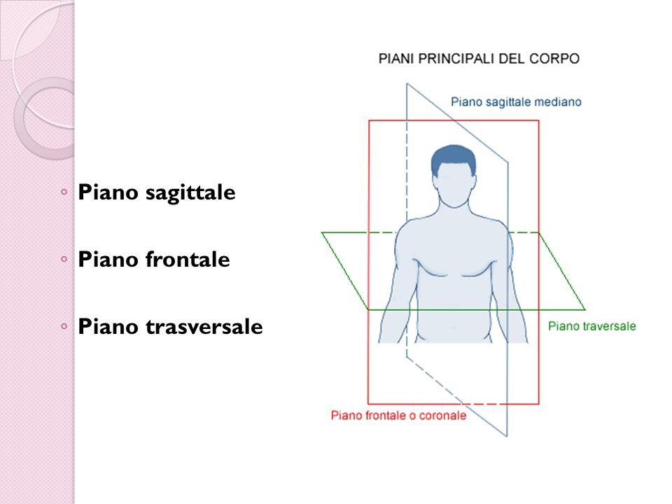 Il corpo lo spazio e il movimento ppt video online for Piani del ponte anteriore
