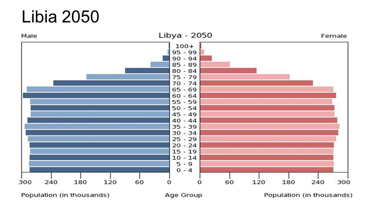 Libia 2050