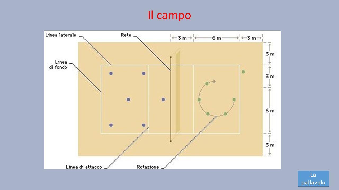 Il campo La pallavolo