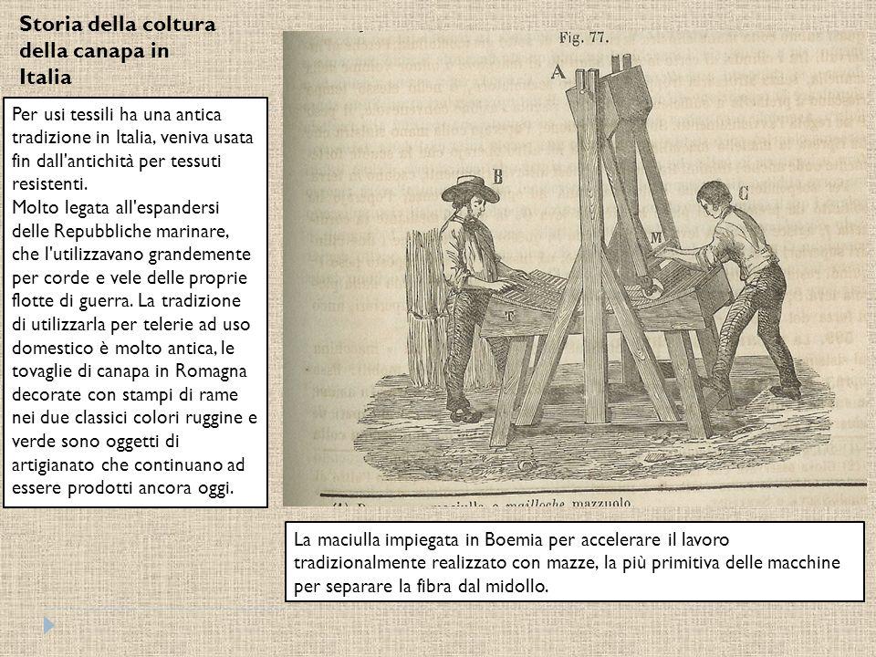 Storia della coltura della canapa in Italia