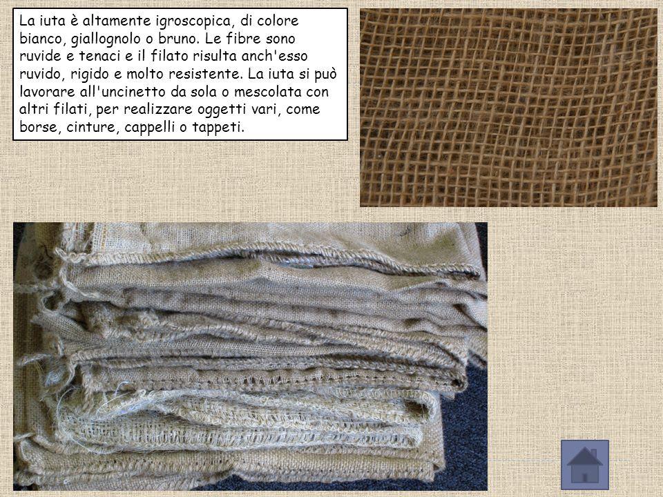 La iuta è altamente igroscopica, di colore bianco, giallognolo o bruno