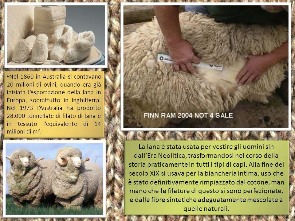 Nel 1860 in Australia si contavano 20 milioni di ovini, quando era già iniziata l'esportazione della lana in Europa, soprattutto in Inghilterra. Nel 1973 l'Australia ha prodotto 28.000 tonnellate di filato di lana e in tessuto l'equivalente di 14 milioni di m².