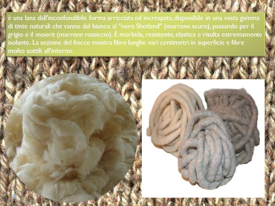 è una lana dall inconfondibile forma arricciata ed increspata, disponibile in una vasta gamma di tinte naturali che vanno dal bianco al nero Shetland (marrone scuro), passando per il grigio e il moorit (marrone rossiccio).