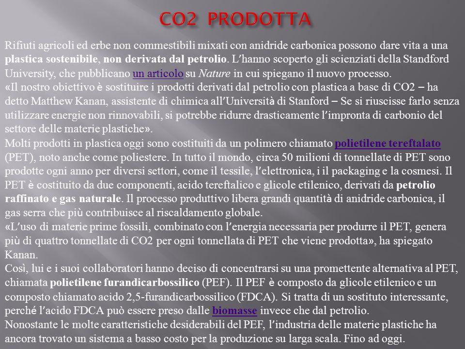 CO2 PRODOTTA