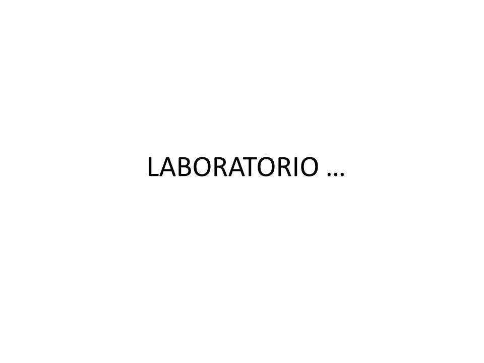 LABORATORIO …