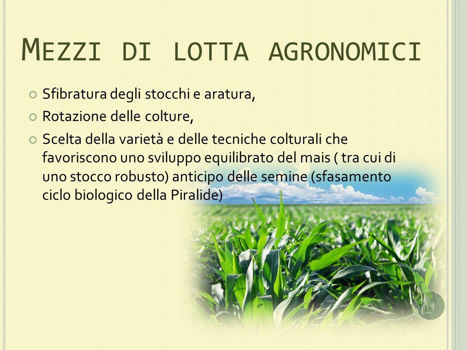 Mezzi di lotta agronomici