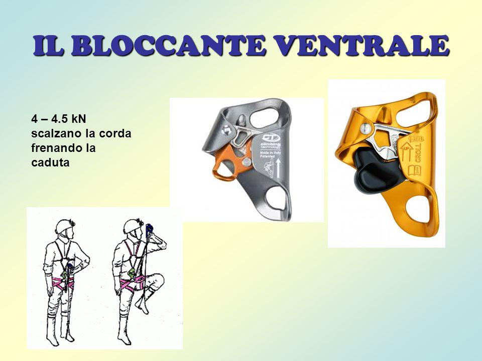 IL BLOCCANTE VENTRALE 4 – 4.5 kN scalzano la corda frenando la caduta