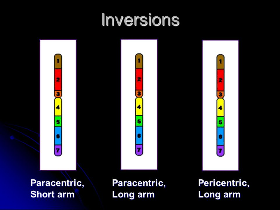 Inversions Paracentric, Short arm Paracentric, Long arm Pericentric,