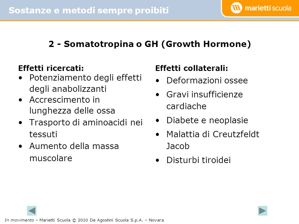 2 - Somatotropina o GH (Growth Hormone)